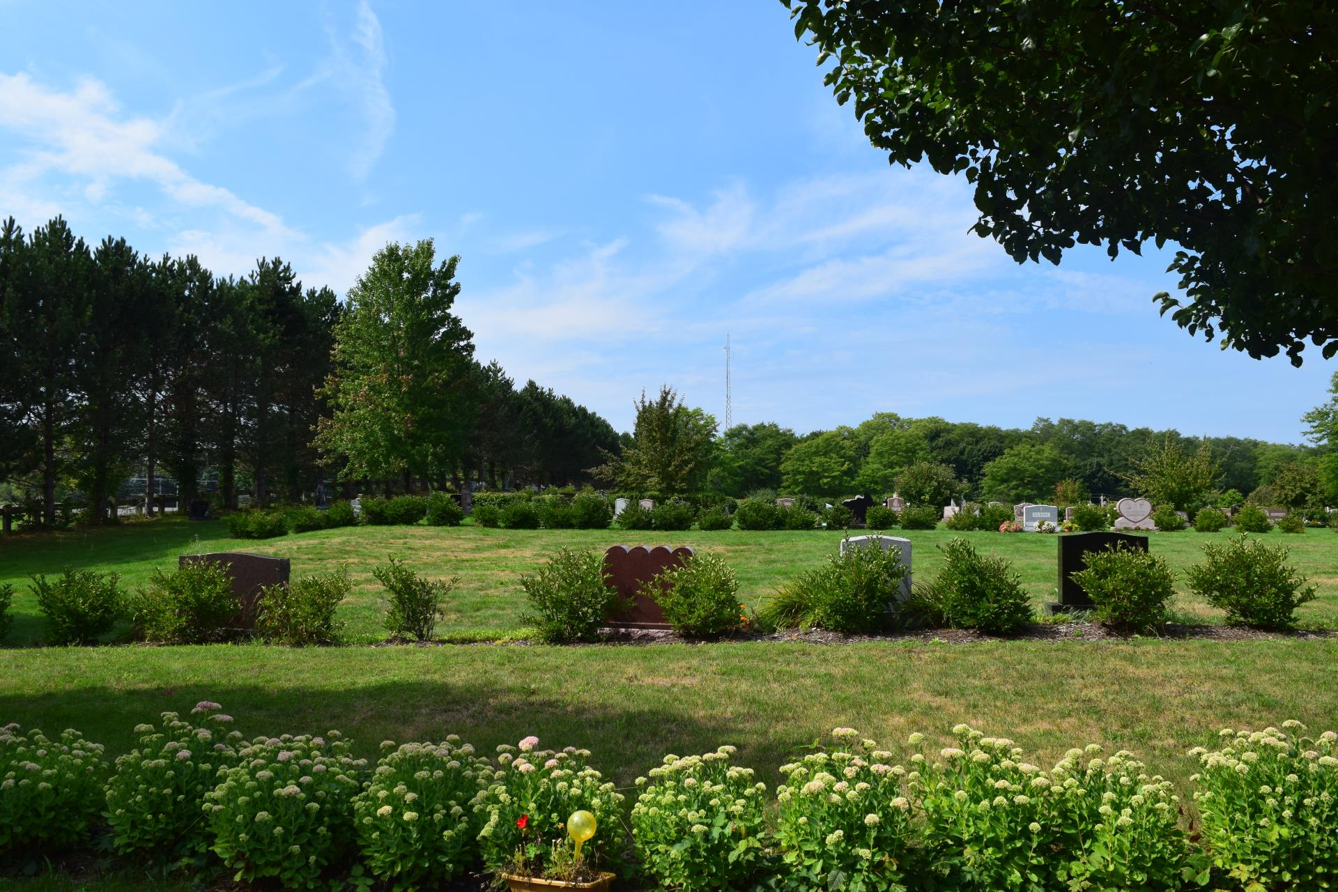 Grounds at St. Peter's Cemetery